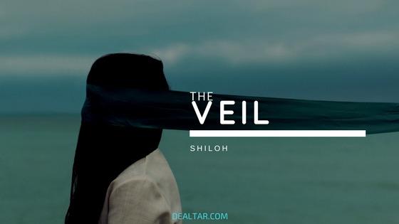 The Veil By Shiloh Akinyemi